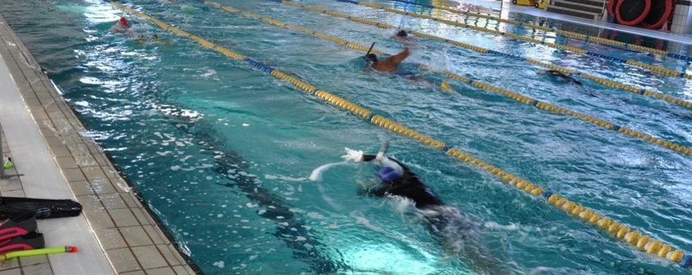 In piscina trattenendo il fiato lezioni di apnea per i ragazzi cronaca mozzate - Piscina olgiate comasco ...