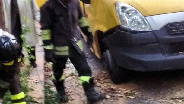 Albero cade su uno scuolabus a Grotte Celoni, ferita una bambina