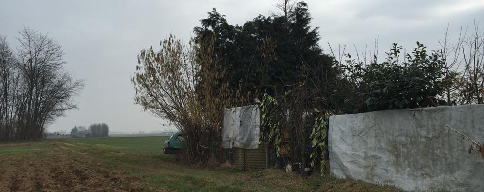 Cade da una pianta: muore papà di 44 anni
