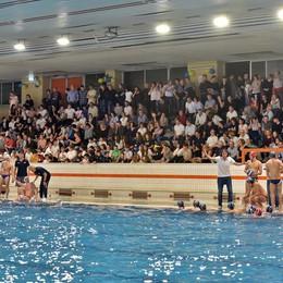 A Muggiò è serata di derby  La Como Nuoto cerca il bis