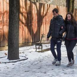 Neve, dopo i disagi controlli sulle aziende  Il Comune: «Chi ha sbagliato pagherà»
