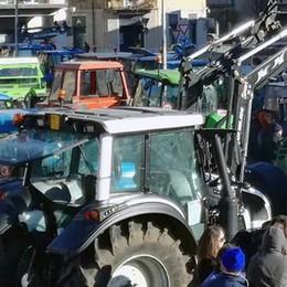 Erba, tanti vogliono fare i contadini 2.0  Il corso di agraria sfiora tre classi