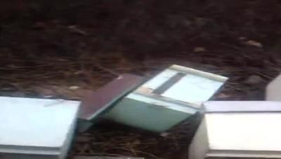 Orsenigo, l'alveare devastato dai vandali