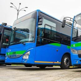 Asf, ecco i nuovi autobus  In arrivo 26 mezzi ecologici