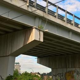 «I controlli sui ponti di Mariano?  Li facciamo solo per sicurezza»
