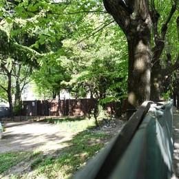Lungolago, da oggi i lavori di sistemazione Si parte nella zona dei giardini