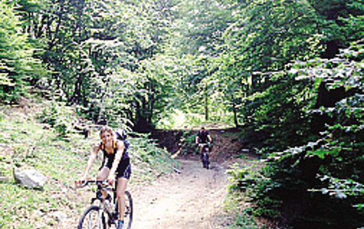 Livo, strada per Dangri  Raccolti 5mila euro
