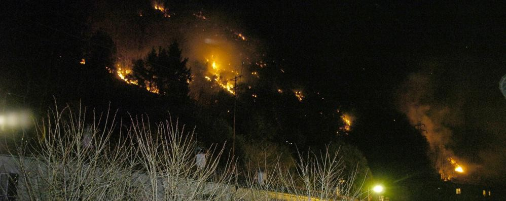 Bosco in fiamme nella notte  Pompieri e volontari a Pianello