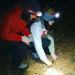 Bendati nel bosco di notte  Per superare la paura dell'ignoto