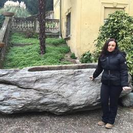 «Ma quale giardino archeologico a Erba  Quel masso deve tornare a Magreglio»