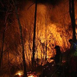 Incendio nei boschi sopra Lezzeno Fiamme a 50 metri dalle case