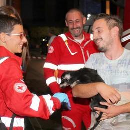 Fiamme in casa, paura a Griante  E i pompieri salvano il cagnolino