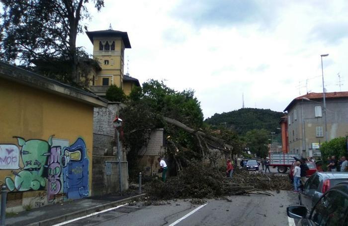 Albate via Sant'Antonino