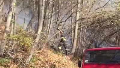 Veleso, i Vigili del fuoco al lavoro
