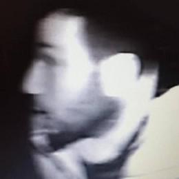 Inverigo, altro tentato furto in casa  Ladro ripreso: qui il video