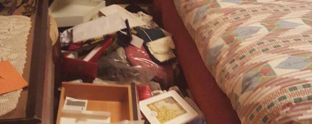 Ladri messi in fuga dalla cagnolina  Lomazzo, via con gioielli e soldi
