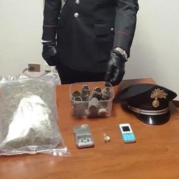 Mezzo chilo di marijuana Un arresto a Vertemate