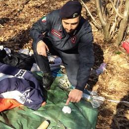 Parco Pineta, controlli antispaccio  I carabinieri sequestrano droga