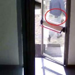 Portafoglio rubato al comandante dei vigili   Le telecamere scovano il ladro