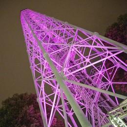 Torre Branca nell'architettura  L'evento ha una firma comasca