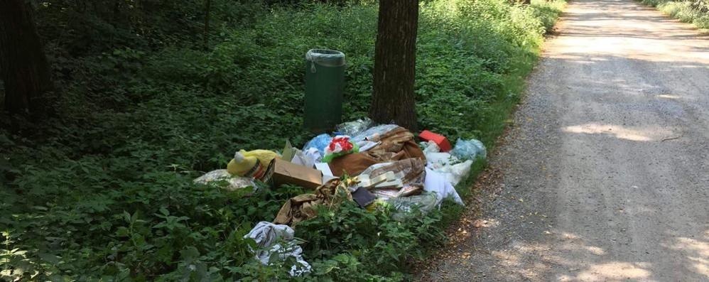 Montorfano e la spazzatura nella riserva  «Altro che parcheggi: bisogna pulire»