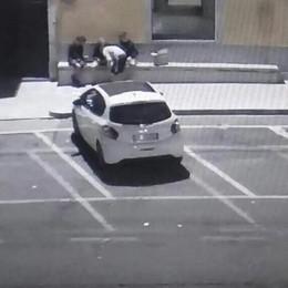 Baby vandali ad Appiano  Sapone sul marciapiede