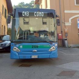 Ponzate non sarà più isolata  Confermati i bus ad agosto