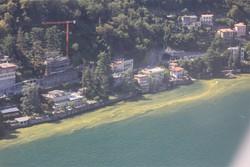 Lago alghe