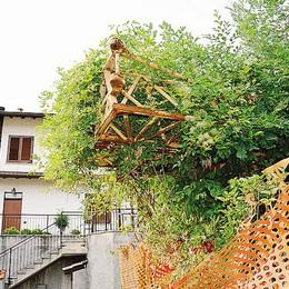 Cantiere  sequestrato  Una giungla a Ronago