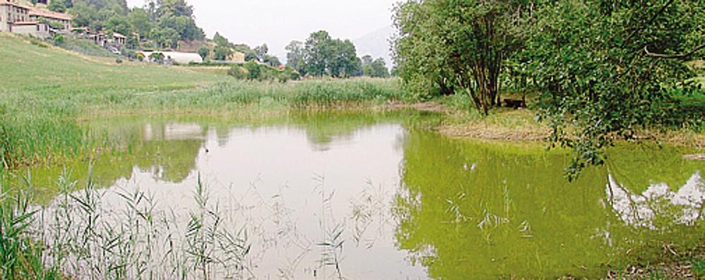 Valassina, paura per il lago di Crezzo
