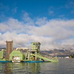 Como in canoa con il lago esondato, battello spazzino dell'Amministrazione Provinciale