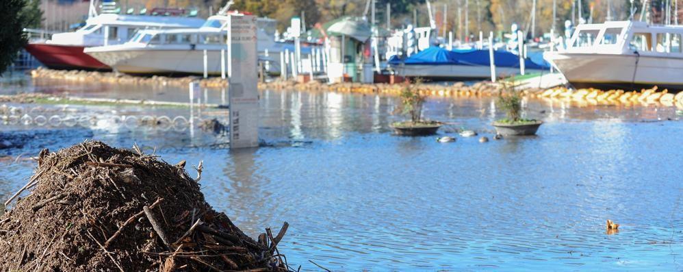 Lungolago, riaperte due corsie  Bixio sempre a senso alternato   GUARDA il lago visto dalla canoa