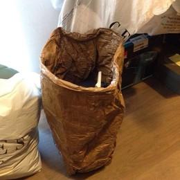 Macchè spesa con i bimbi: nella borsa i jeans rubati