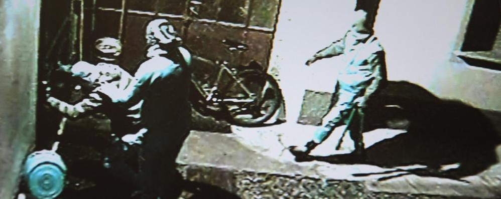 «Taglia di 5 mila euro su questi ladri»
