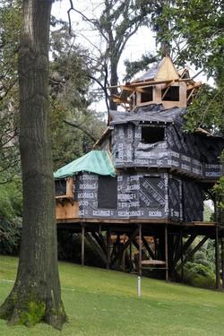 La casa sull albero a torno condanna confermata a dell for Piani di casa sul lago per lotti ripidi