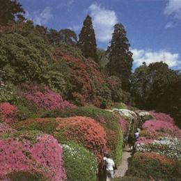 Villa Carlotta e  Villa Melzi  gemellate per i parchi in fiore