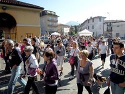 ERBA - PARTENZA CAMMINATA AMICI DI CAROLA E LANCIO PALLONCINI IN PIAZZA MERCATO