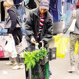 Verdura dall'immondizia  Scoppia il caso a Mariano