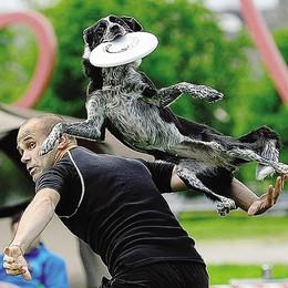 Con un cane e un frisbee  fino al tetto d'Europa