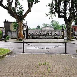 Tre animali decapitati al cimitero  Misteriosa scoperta a Cadorago