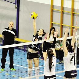 Volley B1 femminile, il presidente  «Tecnoteam può sognare i playoff»