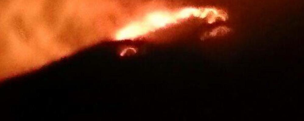 """Vandali """"giocano"""" con il fuoco  Distrutti 80 ettari di pascoli"""