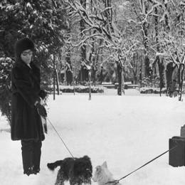 La grande nevicata dell'85  Quando i comaschi  spalavano al Sinigaglia