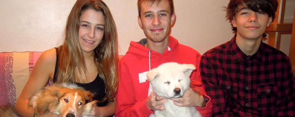 Erba, restituita ai padroni  Torna a casa la cagnolina Giada