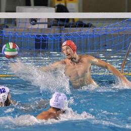 Como Nuoto a Savona Ma non sarà facile