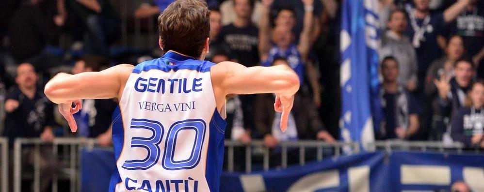 Cantù-Roma: Stefano Gentile   celebra le 150 partite in serie A