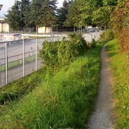 Bambini a scuola senza l'auto di papà Vighizzolo, sentiero protetto