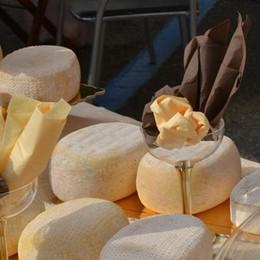 Tempi duri per i troppo buoni  Dopo gli insaccati cancerogeni  Arriva il formaggio come droga