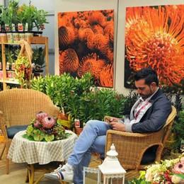 Orticolario a Villa Erba  Il grande evento  dedicato a fiori e giardini