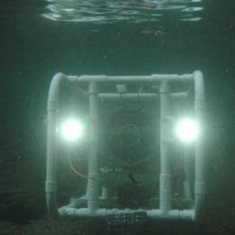 In acqua Proteus 9-14  Il robot made in Como  che conta i pesci del lago